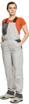 Obrázok z Červa MONTROSE LADY Pracovné nohavice s trakmi šedé