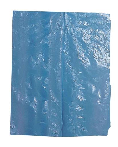 Obrázok z Cerva VYARA Ochranná jednorázová PE zástera s trakmi modrá