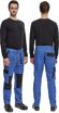 Obrázok z Cerva MAX NEO Pracovné nohavice do pasu modro / čierne