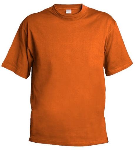 Obrázok z Pánske tričko Chok 160 oranžová