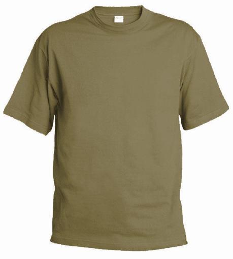 Obrázok z Pánske tričko T9 zinková