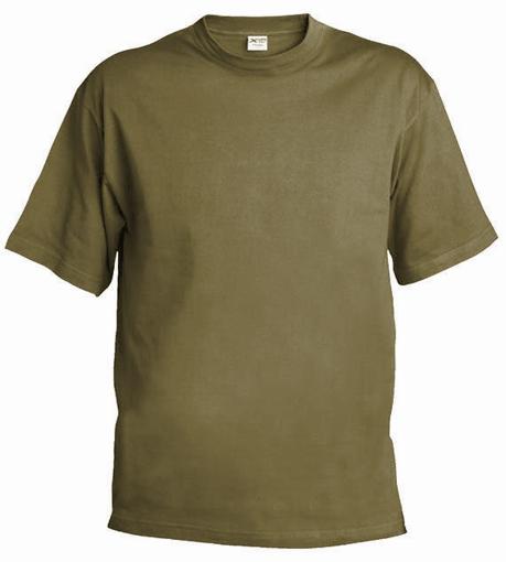 Obrázok z Pánske/dětské tričko T55 zinková